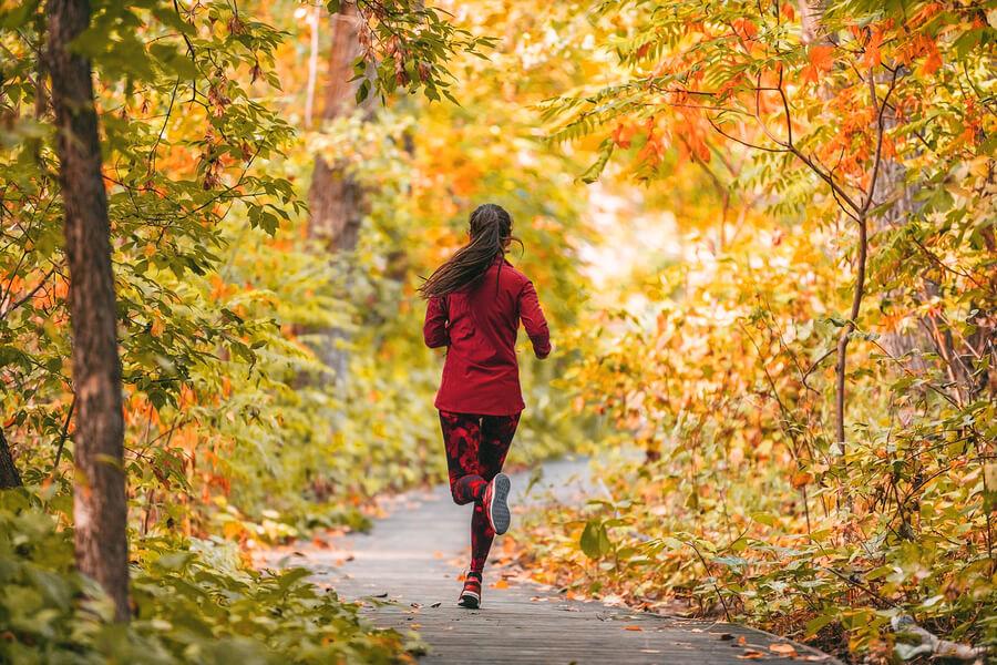 Laufen – Im Sommer Sowie Im Herbst Für Viele Die Ideale Sportart