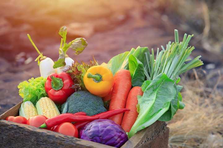 Roh Sind Gemüsearten Oft Noch Besser